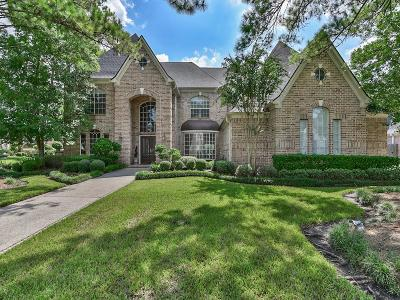 Katy Single Family Home For Sale: 2503 Autumn Shore Circle