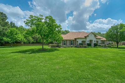 Tomball Single Family Home For Sale: 815 Baker Drive