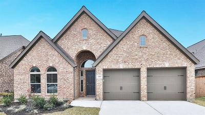 League City Single Family Home For Sale: 2701 Bethel Springs Lane