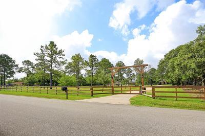 Dickinson Single Family Home For Sale: 14331 Santo Park Road