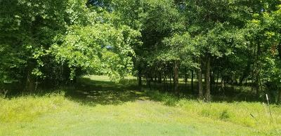 Residential Lots & Land For Sale: Lot 444 Center Drive