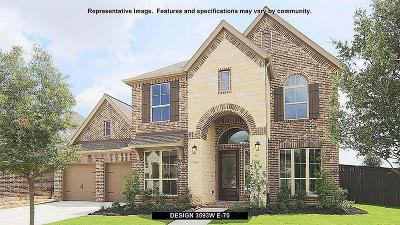 Missouri City Single Family Home For Sale: 3115 Shadow View Lane