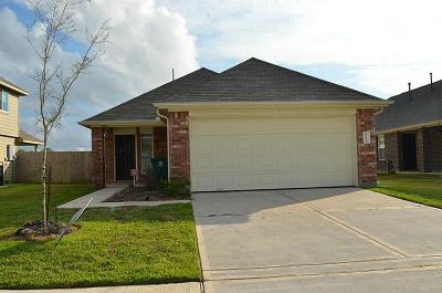 Houston Single Family Home For Sale: 6251 El Oro Drive