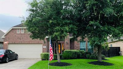 Pearland Single Family Home For Sale: 2506 S Venice Drive