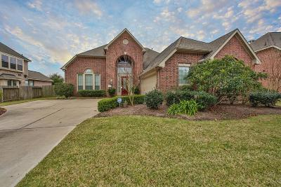 Southern Trails Single Family Home For Sale: 12208 Hidden River Lane