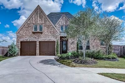 Fulshear Single Family Home For Sale: 27902 Castle Park