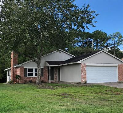 Friendswood Single Family Home For Sale: 16934 Creek Line Drive