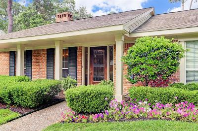 Houston Single Family Home For Sale: 707 Briarpark Drive