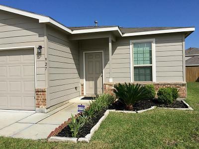 Rosenberg Single Family Home For Sale: 927 Coffee Mill Creek Lane