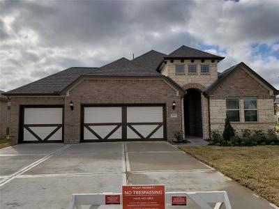 League City Single Family Home For Sale: 3052 Bellflower Pass Lane