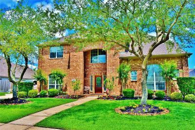 Galveston County Single Family Home For Sale: 602 High Ridge Drive