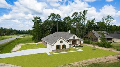 Huffman Single Family Home For Sale: 28503 Redwood Cliff