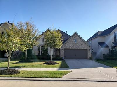 Riverstone Single Family Home For Sale: 6710 Sotoria Lane