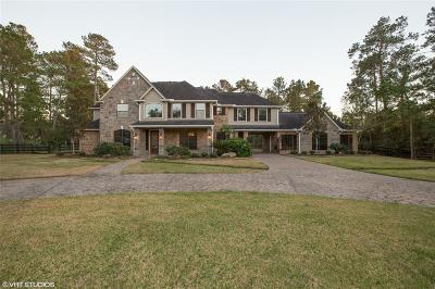 Magnolia Single Family Home For Sale: 28322 Breezy Court