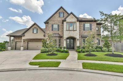 Tomball, Tomball North Rental For Rent: 10903 Stonebrook Terrace Drive