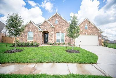 Lakes Of Savannah Single Family Home For Sale: 4838 Alaina Drive