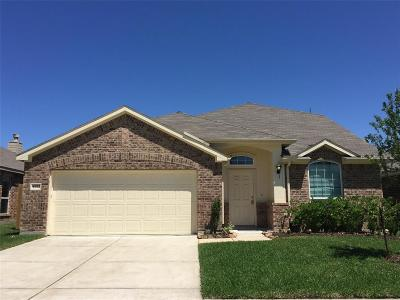 Baytown Single Family Home For Sale: 4522 Castleview Drive