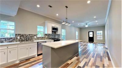 Houston Single Family Home For Sale: 1917 Chestnut Street
