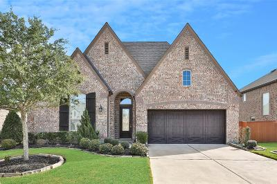 Richmond TX Single Family Home For Sale: $370,000