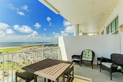 Galveston Mid/High-Rise For Sale: 500 Seawall #1310