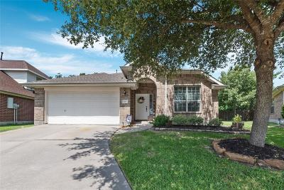 Humble Single Family Home For Sale: 7135 Rose Village Drive