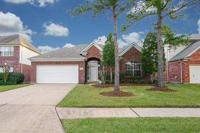 Houston Single Family Home For Sale: 9519 Hanging Moss Trail