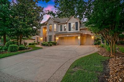 Indian Springs, Woodlands Village Indian Springs Single Family Home For Sale: 22 Julian Woods Place
