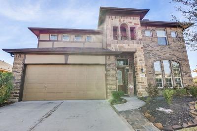 League City, League Single Family Home For Sale: 2412 San Sebastian Court