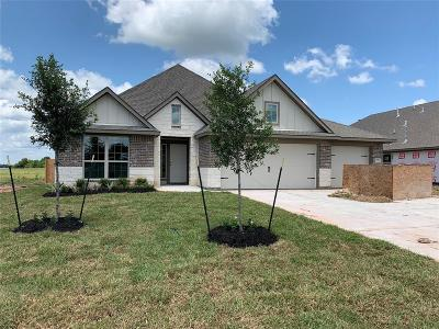 Montgomery Single Family Home For Sale: 155 Abner Lane