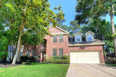 The Woodlands Single Family Home For Sale: 162 W Evangeline Oaks Circle