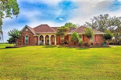 Angleton Single Family Home For Sale: 225 Turning Bayou Trail