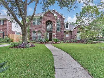 Houston Single Family Home For Sale: 1019 Chinni Court