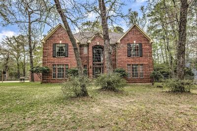 Single Family Home For Sale: 16302 Old Coach Road