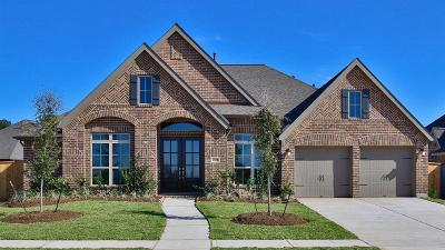 Tomball Single Family Home For Sale: 21434 Martin Tea Trail