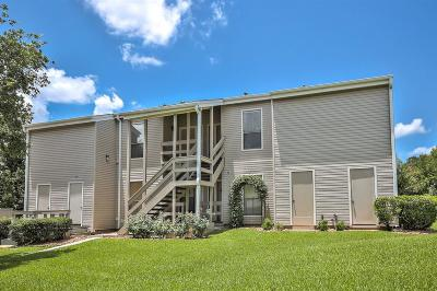 Montgomery Condo/Townhouse For Sale: 162 April Point Drive N #162