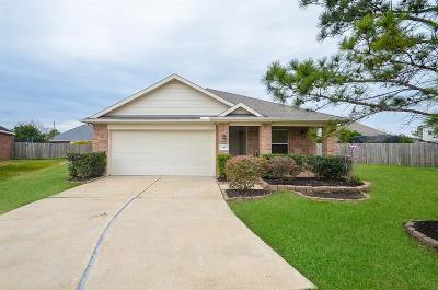Rosenberg Single Family Home For Sale: 606 Bain Bridge Hill Court