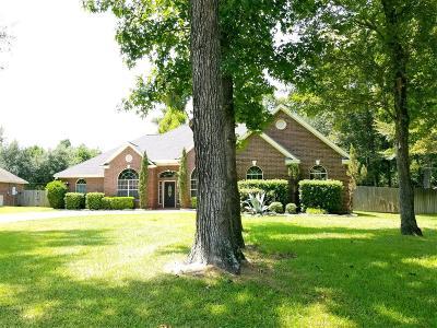 Magnolia Single Family Home For Sale: 919 McDaniel Drive