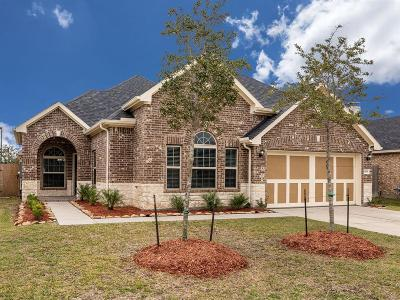 League City Single Family Home For Sale: 1533 Palo Duro Canyon Drive