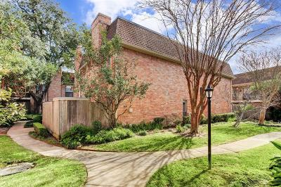 Houston Condo/Townhouse For Sale: 1601 S Shepherd Drive #45
