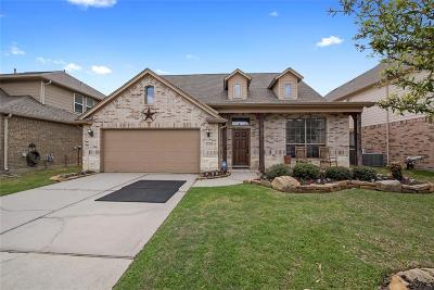 Tomball Single Family Home For Sale: 22419 Windbourne Drive