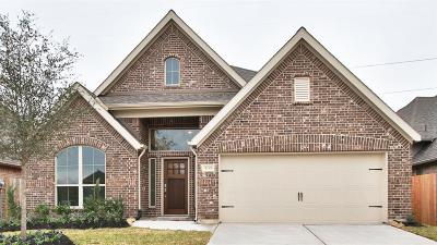 Pearland Single Family Home For Sale: 3105 Primrose Canyon Lane