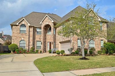 Friendswood Single Family Home For Sale: 2413 Ivy Stone Lane
