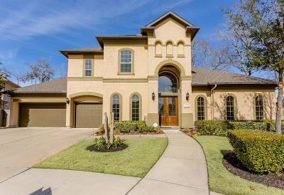 Riverstone Single Family Home For Sale: 4706 Chandler Creek Court