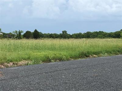 Rosenberg Residential Lots & Land For Sale: 6210 Canvasback Lane