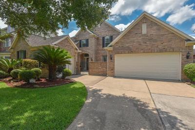 Single Family Home For Sale: 13823 Brannon Field Lane