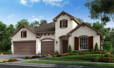 Sugar Land Single Family Home For Sale: 5415 Bellingen River Lane