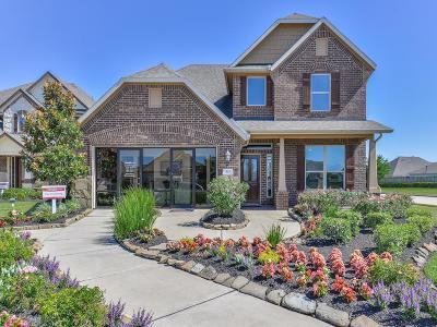 Rosenberg Single Family Home For Sale: 515 Dovecoft