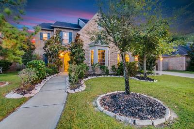 Katy Single Family Home For Sale: 25615 Oakton Springs Drive