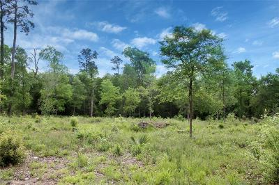 Conroe Residential Lots & Land For Sale: 17031 Concord Divide
