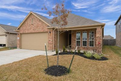 Cypress Single Family Home For Sale: 19826 Haven Cliff Lane